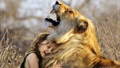Hayvanlar ve ilgin gerçekler