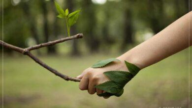 Çevreci olmak
