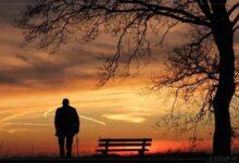 Hayat İçin Önemli 4 Ders