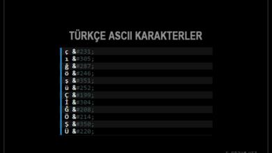 ASCII kodları