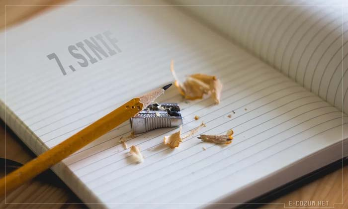 7. Sınıf online testler