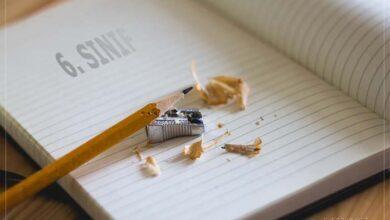 6. Sınıf online testler